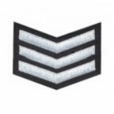 PBSM BADGE RANK 3
